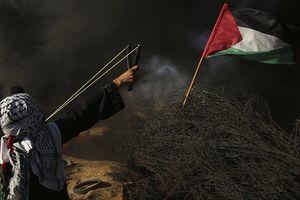 376 người bị thương trong cuộc xung đột ở Gaza