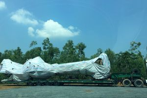 CSGT Quảng Bình chặn xe chở cây 'khủng' trong đêm