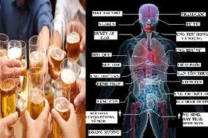 Rượu bia là ngành công nghiệp phi nhân bản, cần điều luật đủ sức kiểm soát