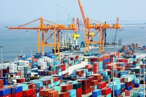 Hạ giá dịch vụ cảng biển 'vô tội vạ', doanh nghiệp Việt tự tìm đường… 'chết'?