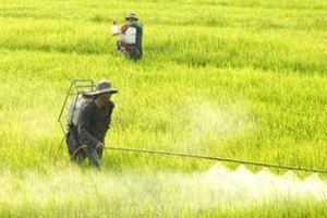 Nông nghiệp – nông dân - nông thôn vay Agribank 692.888 tỷ đồng