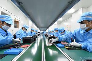 'Sếp' VINASA chỉ ra tương lai hợp tác công nghệ Việt Nam-Nhật Bản