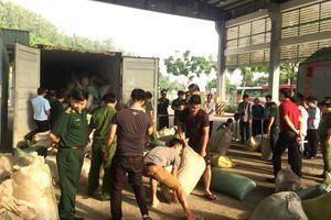 Quá trình phá án, bắt giữ 8 tấn ngà voi và vảy tê tê tại Đà Nẵng