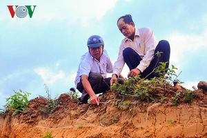 Doanh nghiệp đào xới đất trong khu vực nghĩa địa của dân