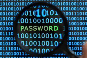 Không lưu mật khẩu khi được đề nghị trên trình duyệt web
