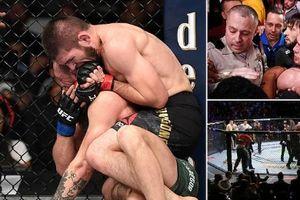 Khabib hạ 'gã điên' McGregor, đánh luôn HLV của đối thủ