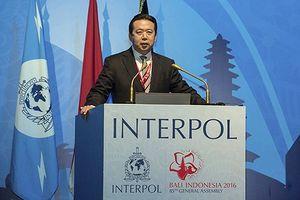 Giám đốc Interpol đã 'hạ cánh' hay 'ngã ngựa'?