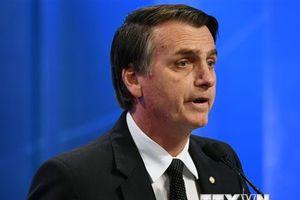 Ứng cử viên Jair Bolsonaro dẫn đầu cuộc bầu cử Tổng thống Brazil
