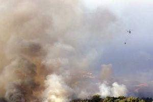 Cháy rừng tại Công viên tự nhiên ở Bồ Đào Nha, 21 người bị thương
