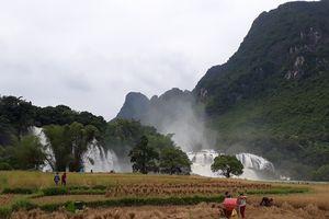 Huyện Trùng Khánh (Cao Bằng): Khoảng 1,5 tỷ đồng tổ chức Lễ hội Thác Bản Giốc lần thứ 2