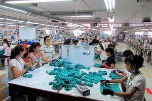 Thừa Thiên Huế xuất khẩu 9 tháng đầu năm đạt trên hai con số