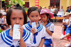 Sữa học đường: Chỉ cần công khai minh bạch, đừng có những cái bắt tay dưới gầm bàn