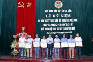 Huyện Gia Lâm: Biểu dương, khen thưởng hội viên nông dân sản xuất kinh doanh giỏi