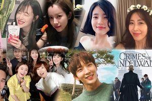 Ảnh gây 'sốt' ngày 09/10: Jang Nara - Jo In Sung 'đoàn tụ', Sulli - Han Ji Min và Kim Tae Ri xinh như hoa