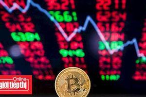 Yếu tố nào giúp Bitcoin vững chắc trên mốc 6.600 USD?