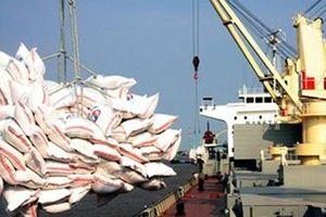 Quy định mới về kinh doanh xuất khẩu gạo