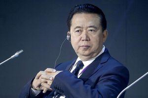 Vai trò tại Interpol của cựu Thứ trưởng Công an Trung Quốc vừa 'sa lưới'