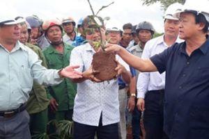 Gia Lai: Khi Hội ND làm cầu nối, chỗ dựa cho nông dân