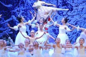 130 vũ công nhí sẽ tham gia vở vũ kịch 'Người đẹp ngủ trong rừng'