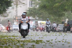 Gió mùa tràn về, Hà Nội mát mẻ