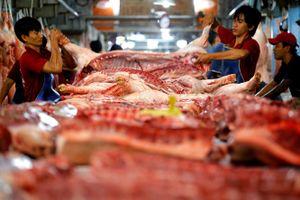 Doanh nghiệp tạo tâm lý khan hàng để đẩy giá thịt heo lên cao