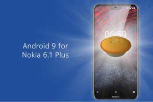 Android 9.0 beta có mặt trên Nokia 6.1 Plus