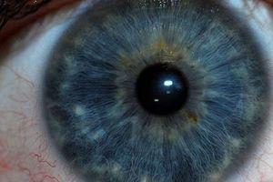 Mắt người có thế nhìn ra 'ảnh ma'