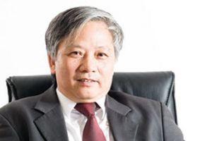 Sau shark Vương, lãnh đạo SAM Holdings tiếp tục từ nhiệm
