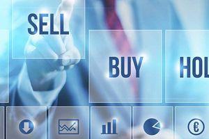 Một cổ đông lớn muốn bán 943.500 cổ phiếu PCG