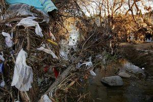 Trung Quốc cấm nhập phế liệu, rác nhựa Mỹ đổ về Đông Nam Á
