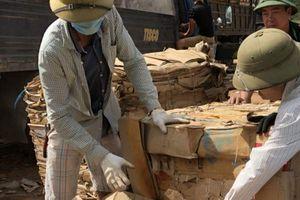 Lô gỗ lậu ngụy trang bằng giấy phế liệu trị giá gần 800 triệu đồng