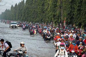 Cần Thơ: Triều cường tiếp tục dâng cao, nguy cơ vỡ đê trên sông Hậu