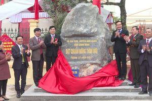 Ninh Bình: Nhiều thôn đặc biệt khó khăn, xã an toàn khu đạt chuẩn nông thôn mới