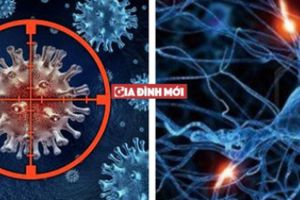 Hiểu đúng về điều trị đích, điều trị miễn dịch trong chữa bệnh ung thư