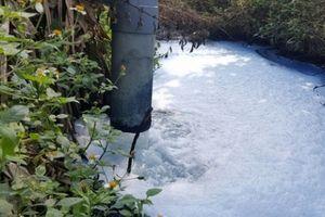 Hưng Yên: Xả thải gây ô nhiễm môi trường, Công ty thức ăn chăn nuôi miền Bắc bị phạt gần 200 triệu đồng