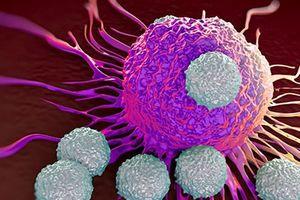 Đột phá trong cuộc chiến chống ung thư loài người