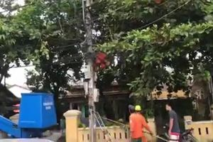 Điện lực Huế thông tin việc công nhân tử vong khi sửa điện
