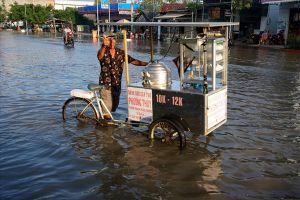 QL1A đoạn qua Bạc Liêu ngập sâu, cuộc sống người dân bị đảo lộn