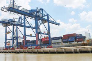 Nhập khẩu ô tô tại Cảng container Trung tâm Sài Gòn - SPCT liên tục đạt kỷ lục