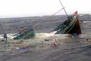 Tàu câu mực chìm trên biển, 45 ngư dân thoát chết