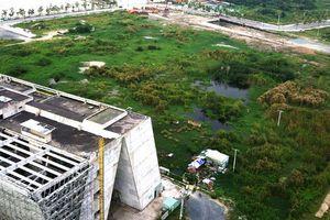 Xây nhà hát 1.500 tỷ ở Thủ Thiêm: Chủ tịch HĐND TP.HCM nói gì?
