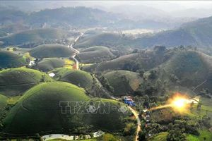 Những 'ốc đảo' chè đẹp như tiên cảnh ở Long Cốc, Phú Thọ