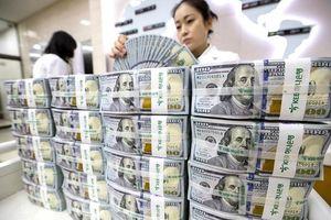 Thách thức vị thế đồng USD