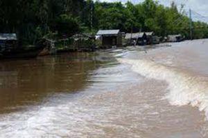 Lũ trên sông Cửu Long: Đỉnh lũ ở Cần Thơ, Mỹ Thuận đều vượt mốc lịch sử