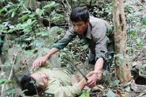 5 thanh niên vác dao tấn công nhân viên bảo vệ rừng vì không được hái măng?