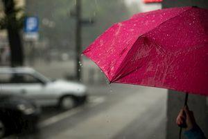 Đừng chỉ nhìn vào cơn mưa, hãy lắng nghe những âm thanh đẹp đẽ trong đó