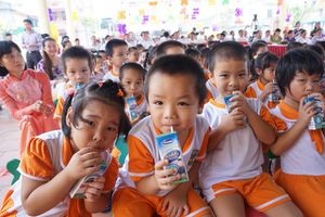 Bộ Y tế hướng dẫn về loại sữa tham gia Chương trình Sữa học đường