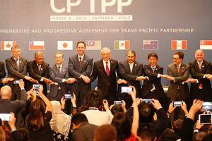 Sợ 'thuốc độc' của Mỹ, Trung Quốc muốn gia nhập CPTPP?