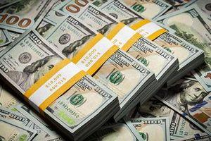 Quý bà U60 'sập bẫy' người tình ngoại, mất hàng trăm triệu đồng
