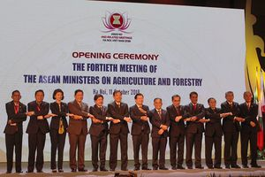 Nông nghiệp đóng vai trò cốt lõi của cộng đồng kinh tế ASEAN